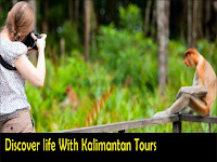 discover life with kalimantan tours