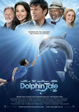 Dolphin Tale 2011 BRRip 350MB Hindi Dual Audio 480p ESub Watch Online Full Movie Download bolly4u