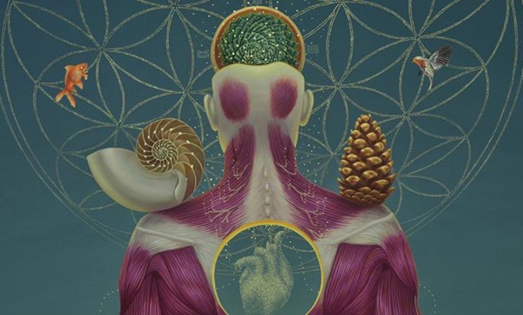 O inconsciente biológico; O código secreto do sintoma