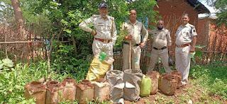 स्लीमनाबाद क्षेत्र अंतर्गत आबाकारी विभाग की कार्रवाई