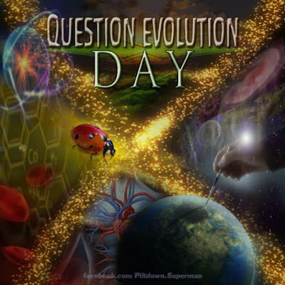 The tenth annual Question Evolution Day
