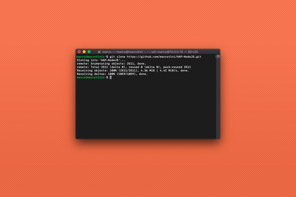 Come installare HAP-NodeJS su Raspberry Pi