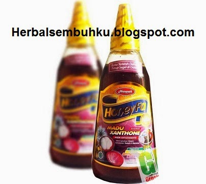 http://www.herbalsembuhku.com/2014/03/honeyfa-madu-manggis-extrack-xanthone.html