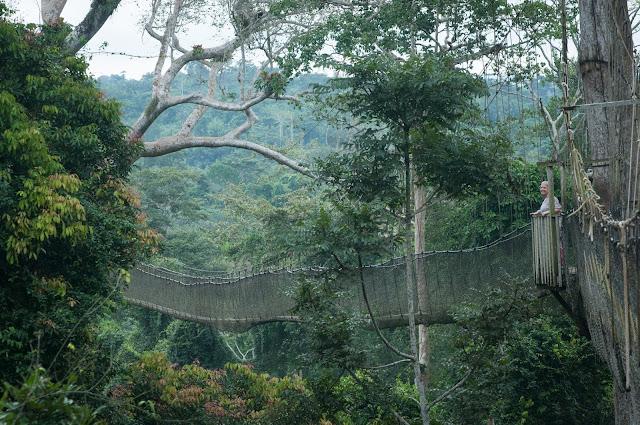 Highest point; Kakum National Park, Ghana