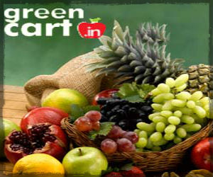 how to start online grocery store in india