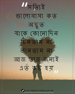 bengali sad love shayari