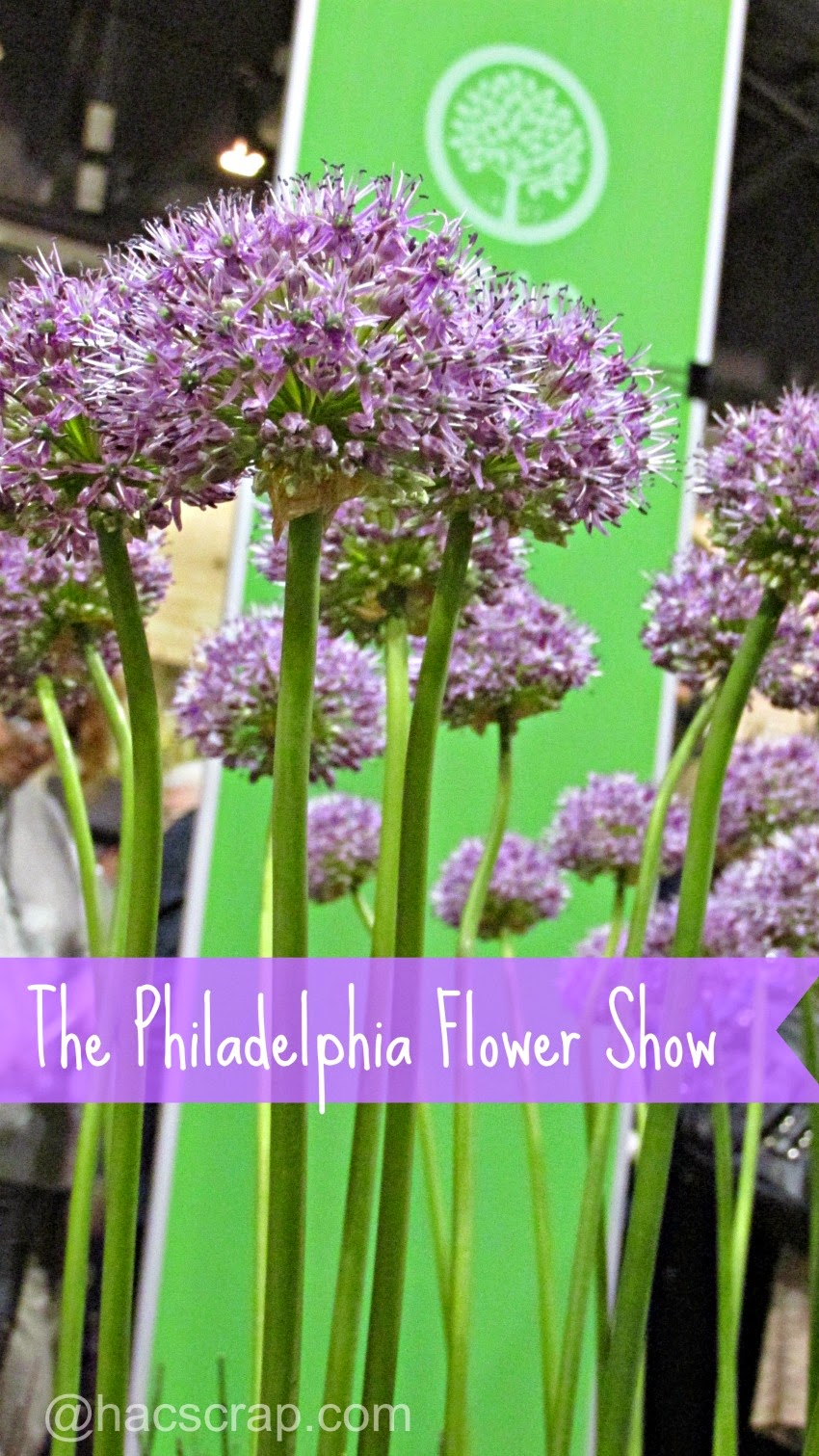 Visiting the 2015 Philadelphia Flower Show
