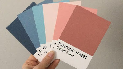 Pattern Warna Cat Rumah Soft