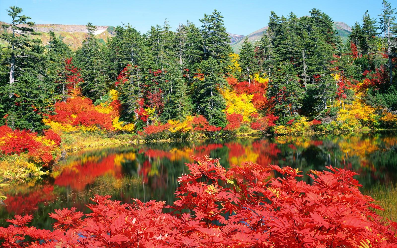 25張美麗的夏日北海道風光風景桌布下載!(Hokkaido Desktop Wallpaper Download)