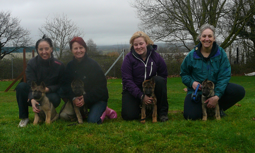 Four puppies and their walkers crouched down in the grassed training field