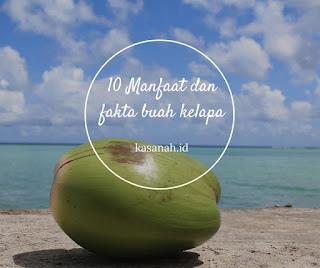Buah kelapa