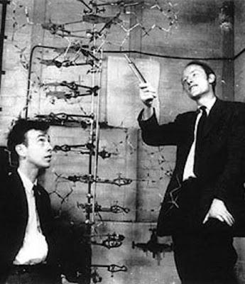 Teori Sel watson dan crick - berbagaireviews.com