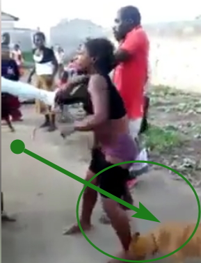 dog jungle justice onitsha anambra state