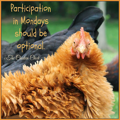 Participation in Mondays should be optional