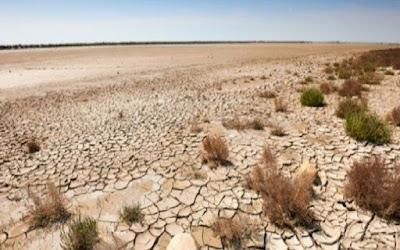 الزراعة النيابية: العراق يفقد 100 ألف دونم سنوياً من أراضيه بسبب التصحر
