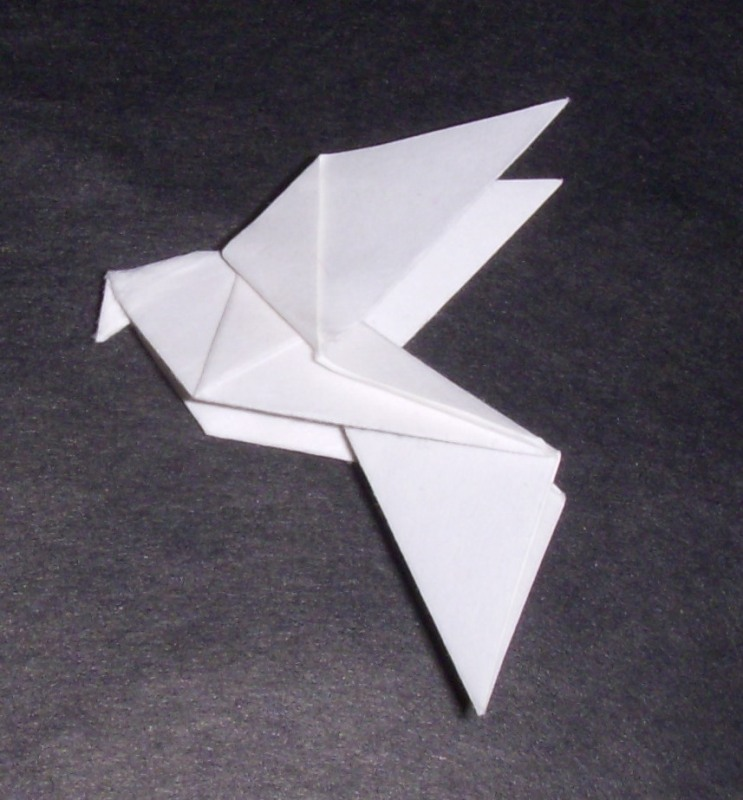 Origami: Origami Dove - photo#22