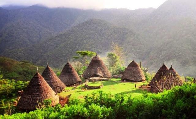 Manfaat dan Kegunaan Rumah Adat Papua