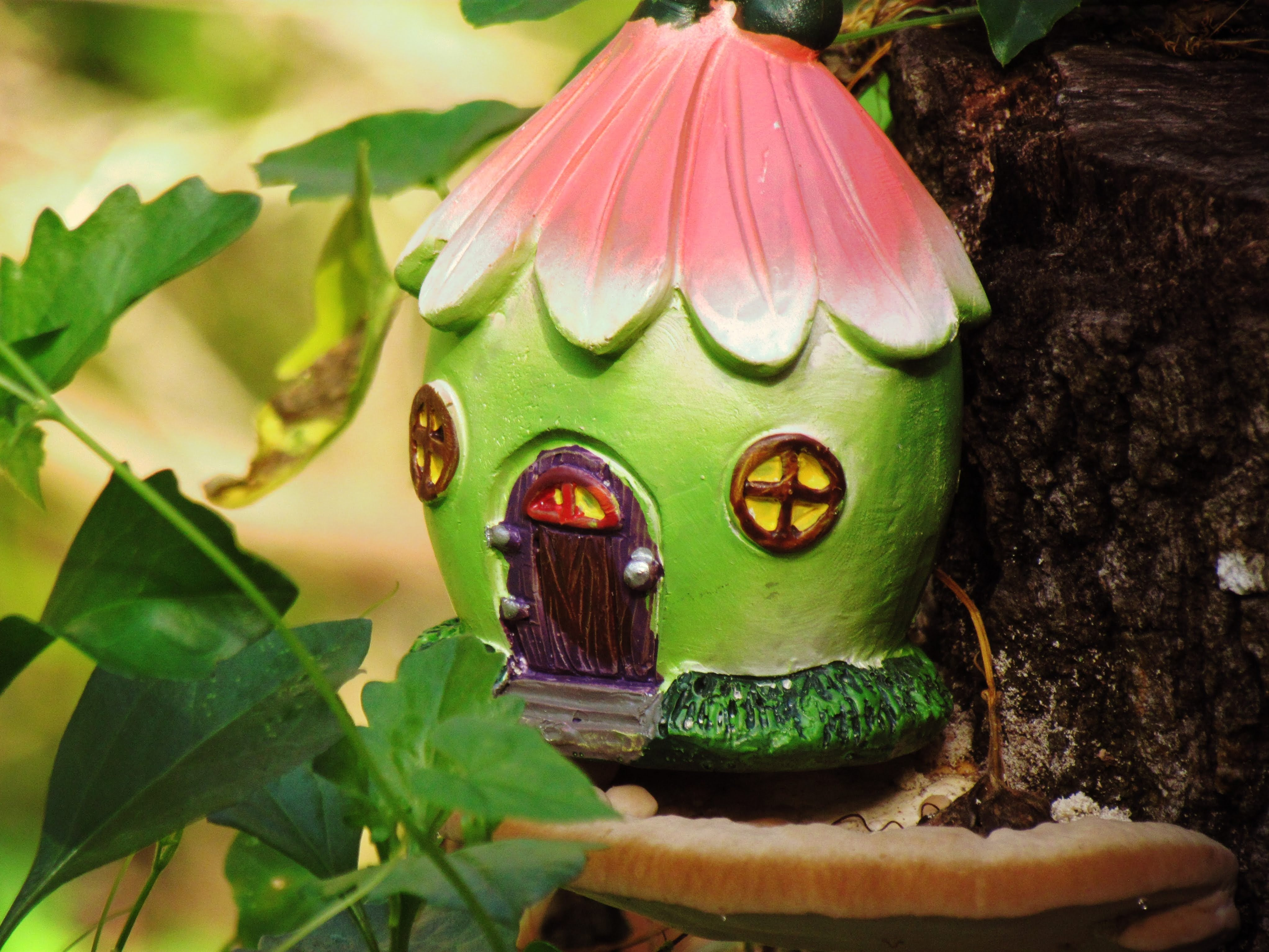 A tiny fairy house sitting atop an oyster mushroom in a fairy forest in Florida with pink trimming
