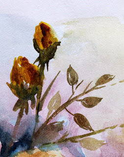 yellow rose buds watercolor