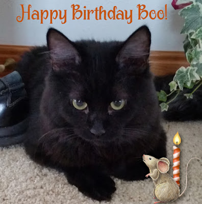 Boo's First Birthday