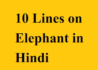 Few lines on Elephant in Hindi