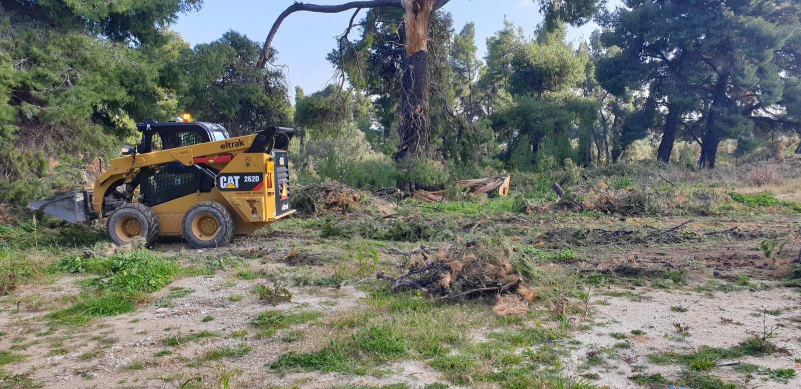 Καθαρισμός της Κασσάνδρας από συνεργεία του Δήμου.