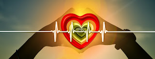 Ensuring You Have Good Cardiovascular Health