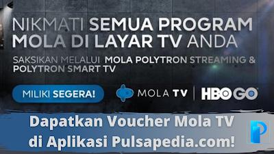 Voucher Mola TV Live Streaming Murah