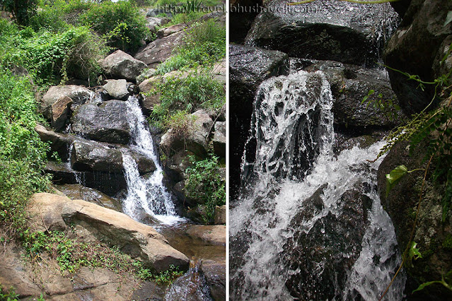 Yercaud streams