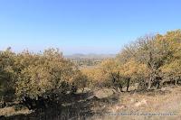 هضبة الجولان, Altos del Golán, Golanhoogten, ゴラン高原, Wzgórza Golan, Голанские высоты, 戈蘭高地