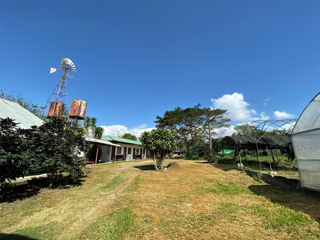 Organic Farm in Batangas