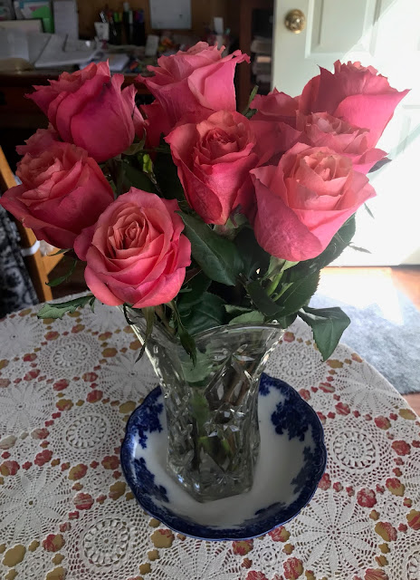 Compliments are like Roses, Rose Fountain Of Blessings Blog...