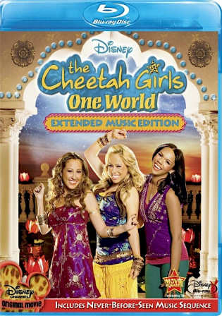 The Cheetah Girls One World 2008 BluRay 700MB Hindi Dual Audio 720p Watch Online Full Movie Download bolly4u