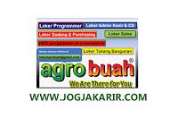 Loker di Agro Buah Yogyakarta (Programmer, HRD, Sales, Purchasing, Kasir, CS, Tukang Bangunan)