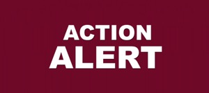 ACTION ALERT in bold white letters on dark red background