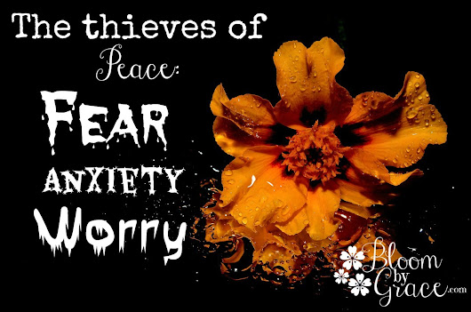 The thieves of Peace: Fear, Anxiety and Worry