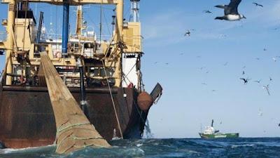 L'UE et la Mauritanie annoncent la conclusion des négociations pour un nouvel accord de pêche