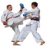 karate sports in spanish