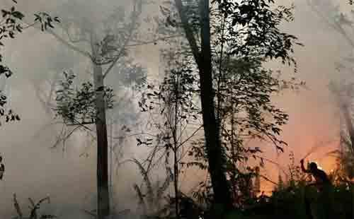 SEADANYA: Warga Perumahan Nuansa Serdam bekerja keras memadamkan api dengan alat seadanya sebelum para pemadam datang. Api hanya berjarak 10 meter dari permukiman warga,sementara sumber air sulit didapat. SHANDO SAFELA/ PONTIANAK POST