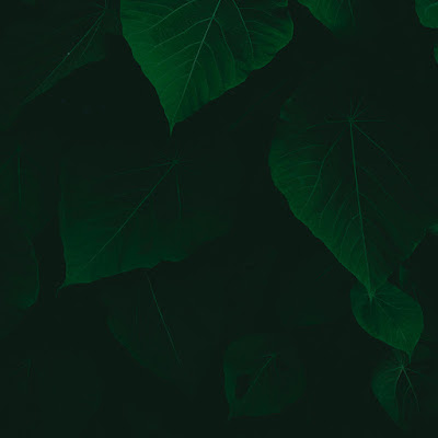 صور خلفيات روعه، خلفيات جميلة للفوتوشوب 21
