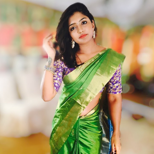 Eesha Rebba (Indian Actress) Wiki, Age, Height, Boyfriend, Family, and More
