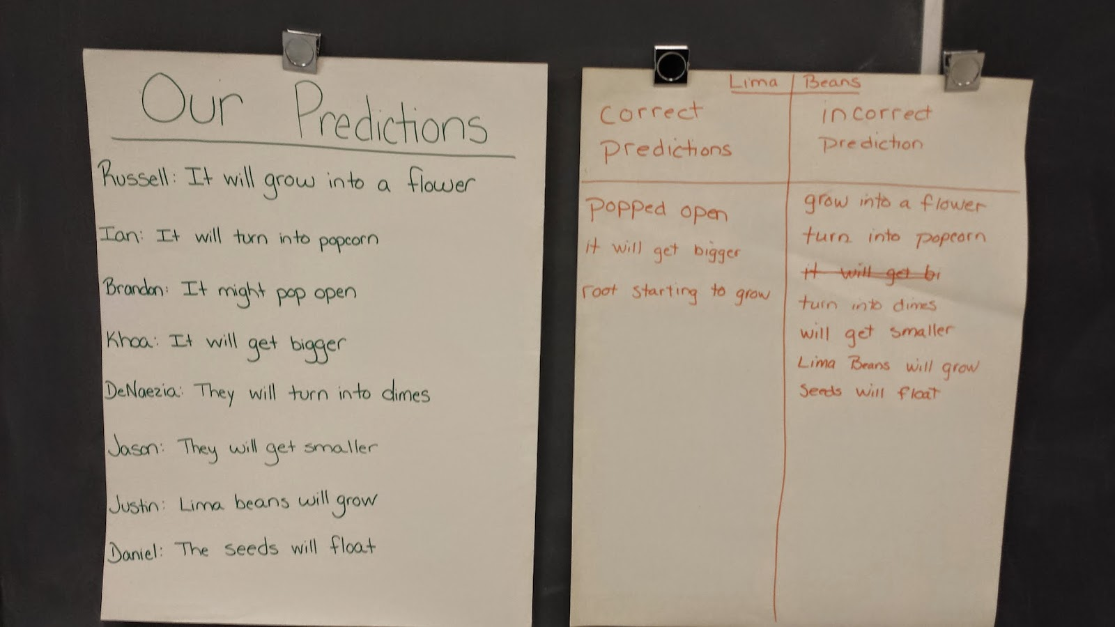 photo of the class predictions and the results of the experiment.