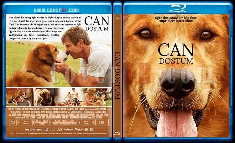 A Dogs Purpose (2017) English 720p & 1080p Blu-Ray A Dogs Purpose (2017) English HDCAM XviD 850MB