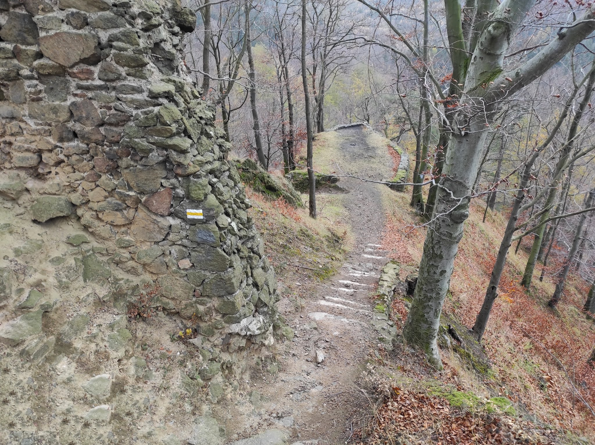 Góry Wałbrzyskie: wędrówka na Borową - wariant najtrudniejszy z trudnych 😉