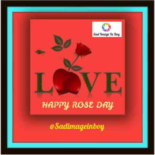 Rose Day Images | wallpaper rose, happy rose day gif, picture of rose, roses gif, rose flower photos love