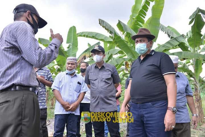 Wabup Muarojambi Sambut Anggota DPR-RI Komisi VIII Hasan Basri Agus
