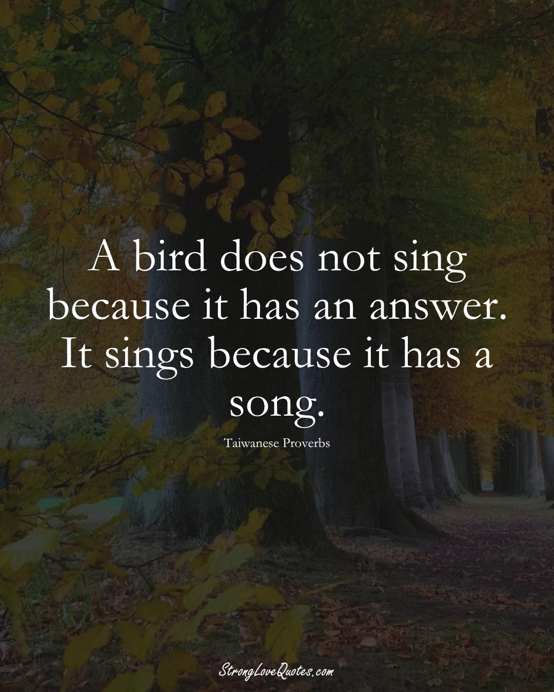 A bird does not sing because it has an answer. It sings because it has a song. (Taiwanese Sayings);  #AsianSayings