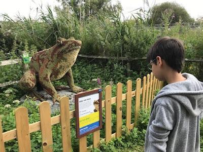 WWT Arundel large Lego frog
