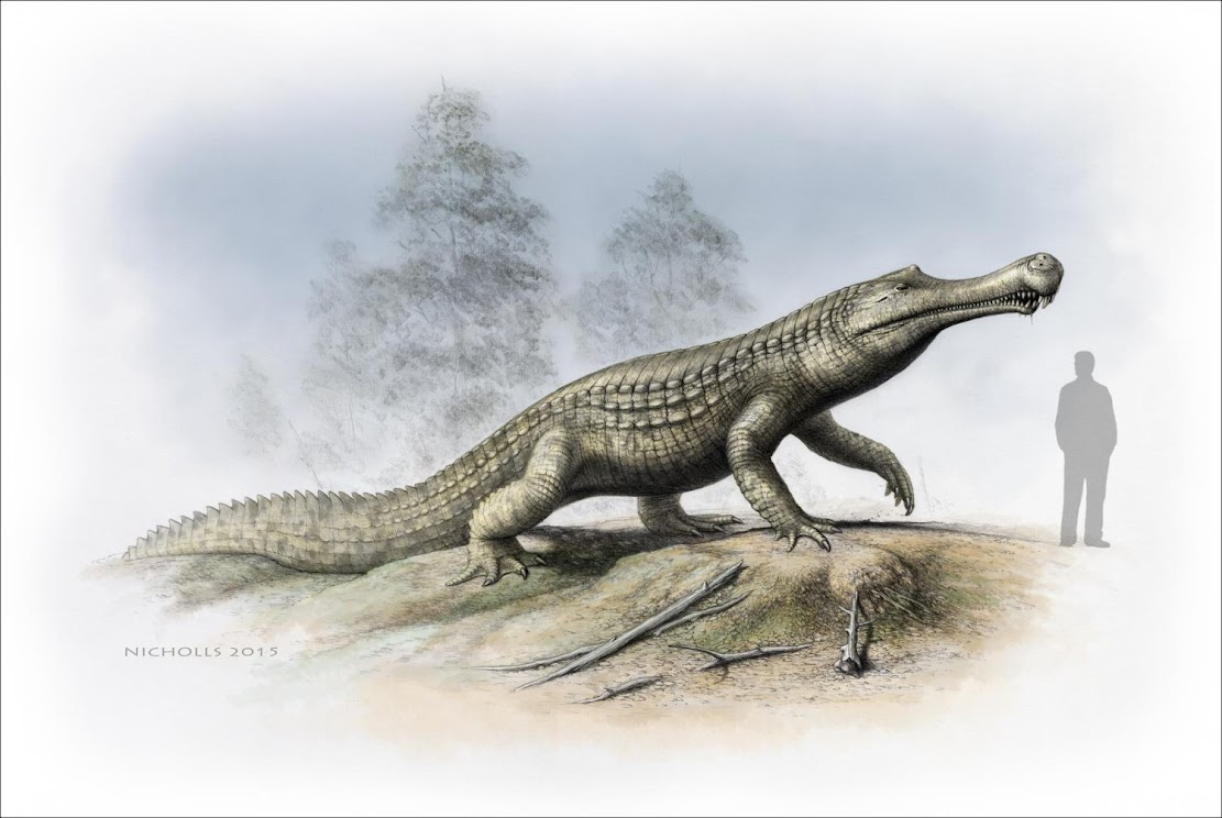 Fossils: Cold snap: Climate cooling and sea-level changes caused crocodilian retreat