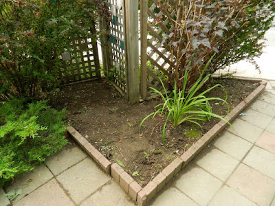 Toronto Leslieville Front Garden Cleanup After by Paul Jung Gardening Services--a Toronto Gardening Company